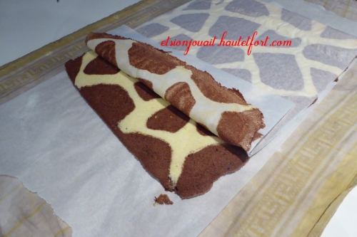 gato girafe11.jpg