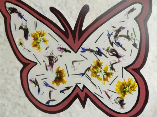 papillon fleurs séchées (8).JPG