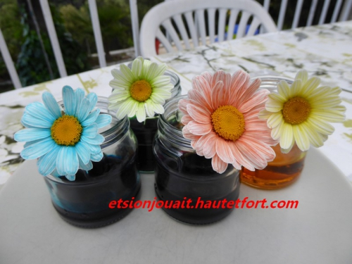 fleurs2.jpg